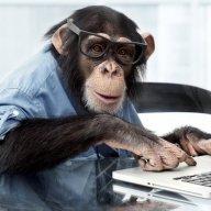 A Chimpanzee & 2 Trainees
